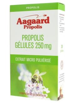 Propolis Gélules 250 mg