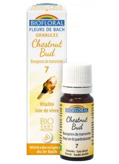 Fleur de Bach Bourgeon de marronnier (chestnut bud) N°7 granules