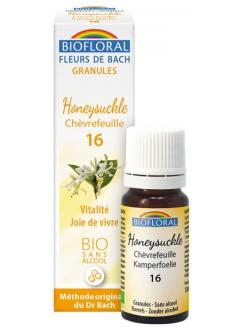 Fleur de Bach Chevrefeuille (honeysuckle) N°16 granules