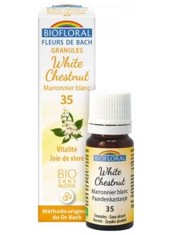 Fleur de Bach Marronnier blanc (white chestnut) N°35 granules