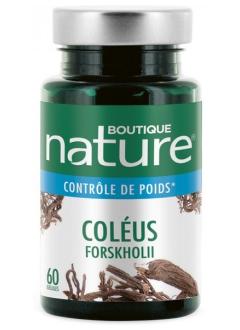 Coleus Forskohlii Plante + Extrait