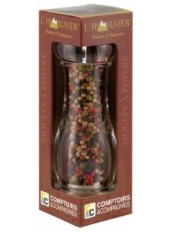 Moulin de poivre 5 Saisons