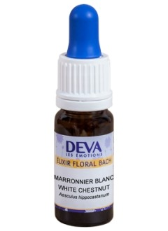 Marronnier blanc (White Chestnut) - 10 ml