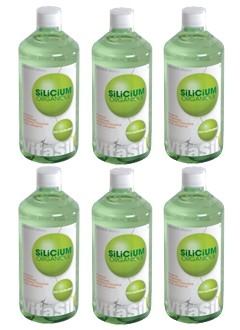 Silicium VitaSil - 6 x 1 Litre