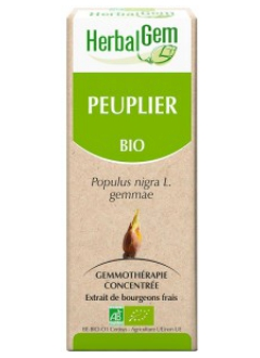 Peuplier Bio - 15 ml