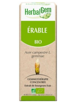 Erable Bio - 50 ml