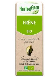 Frêne Bio - 50 ml