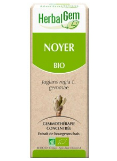 Noyer Bio - 50 ml
