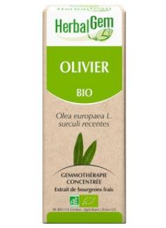Olivier Bio - 50 ml