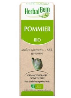 Pommier Bio - 50 ml