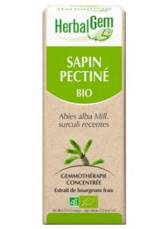 Sapin pectine Bio - 50 ml