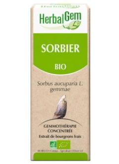 Sorbier Bio - 50 ml