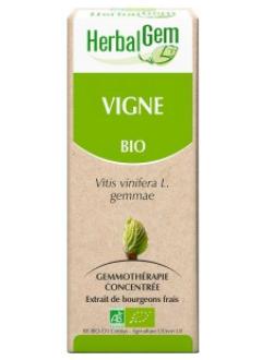 Vigne Bio - 50 ml
