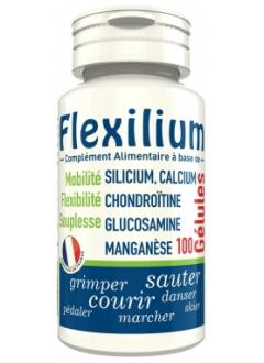 Flexilium