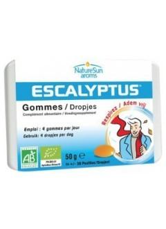 Escalyptus pastilles bio