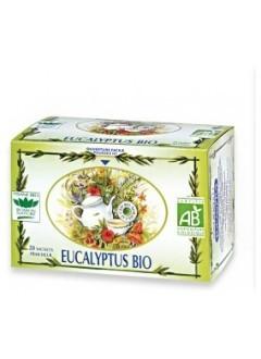 Tisane Eucalyptus bio