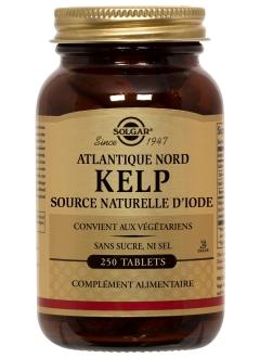 Kelp Atlantique Nord